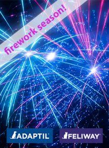 firework-season